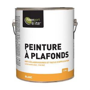 PEINTURE À PLAFONDS ANTI-ÉCLABOUSSURES - BLANC