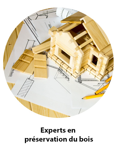 Experts-bois